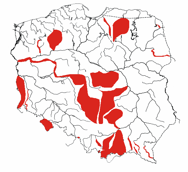Ichtofaunistyczne badania polskich rzek 29 Rys. 5. Rzeki i systemy rzeczne, w których prowadzono ichtiologiczne badania monitoringowe. Fig. 5. Rivers and river basins in which the ichthyological monitoring was conducted.