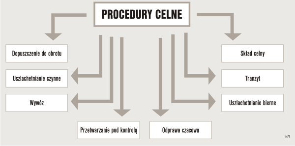 Procedury celne Spedycja (AM) dr Adam Salomon,