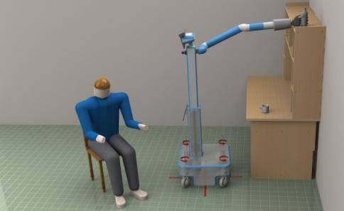 physical and cognitive decline Robotic