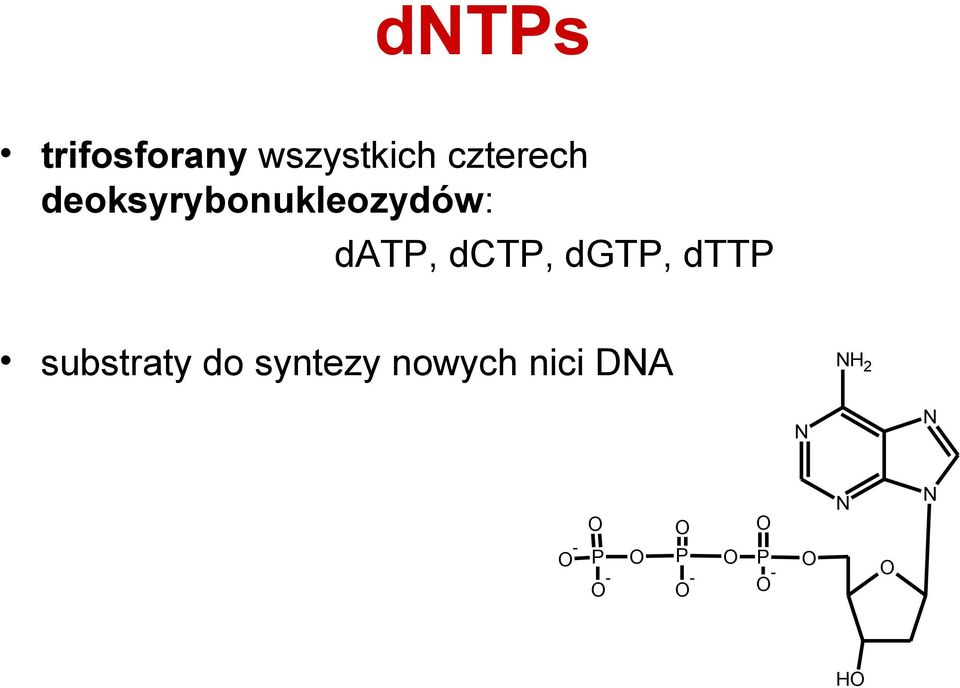 dttp substraty do syntezy nowych nici DNA