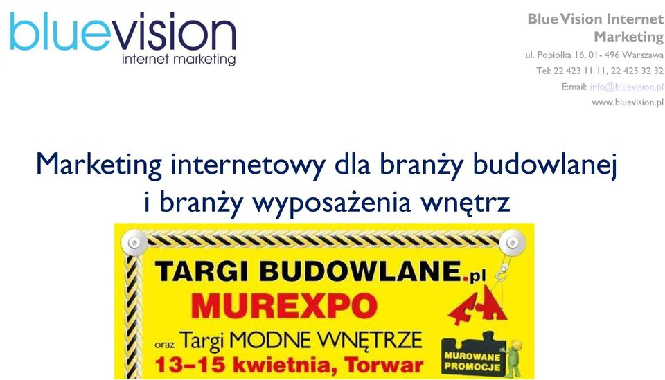 425 32 32 E:mail: info@bluevision.