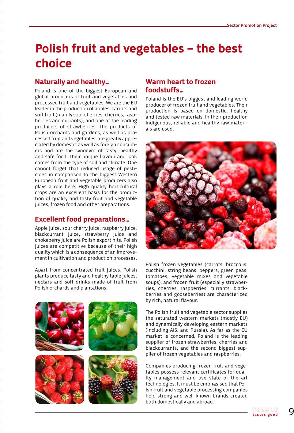 The products of Polish orchards and gardens, as well as processed fruit and vegetables, are greatly appreciated by domestic as well as foreign consumers and are the synonym of tasty, healthy and safe