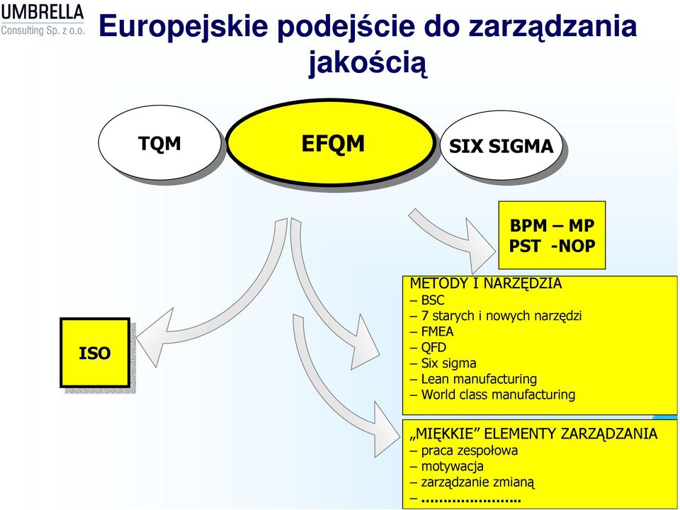 narzędzi FMEA QFD Six sigma Lean manufacturing World class