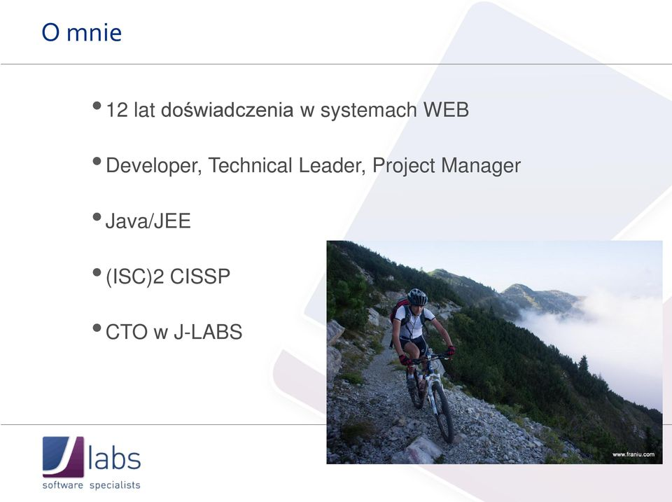 Technical Leader, Project