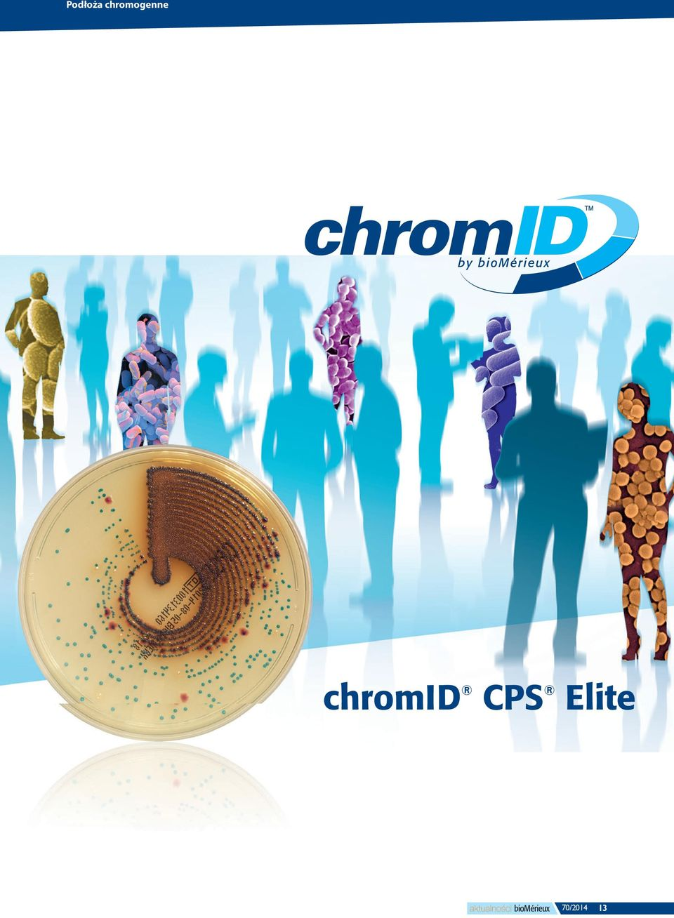 difficile chromid Strepto B chromid mrsa Już