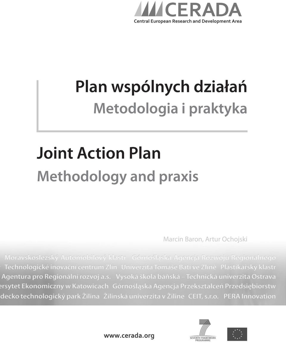 Action Plan Methodology and