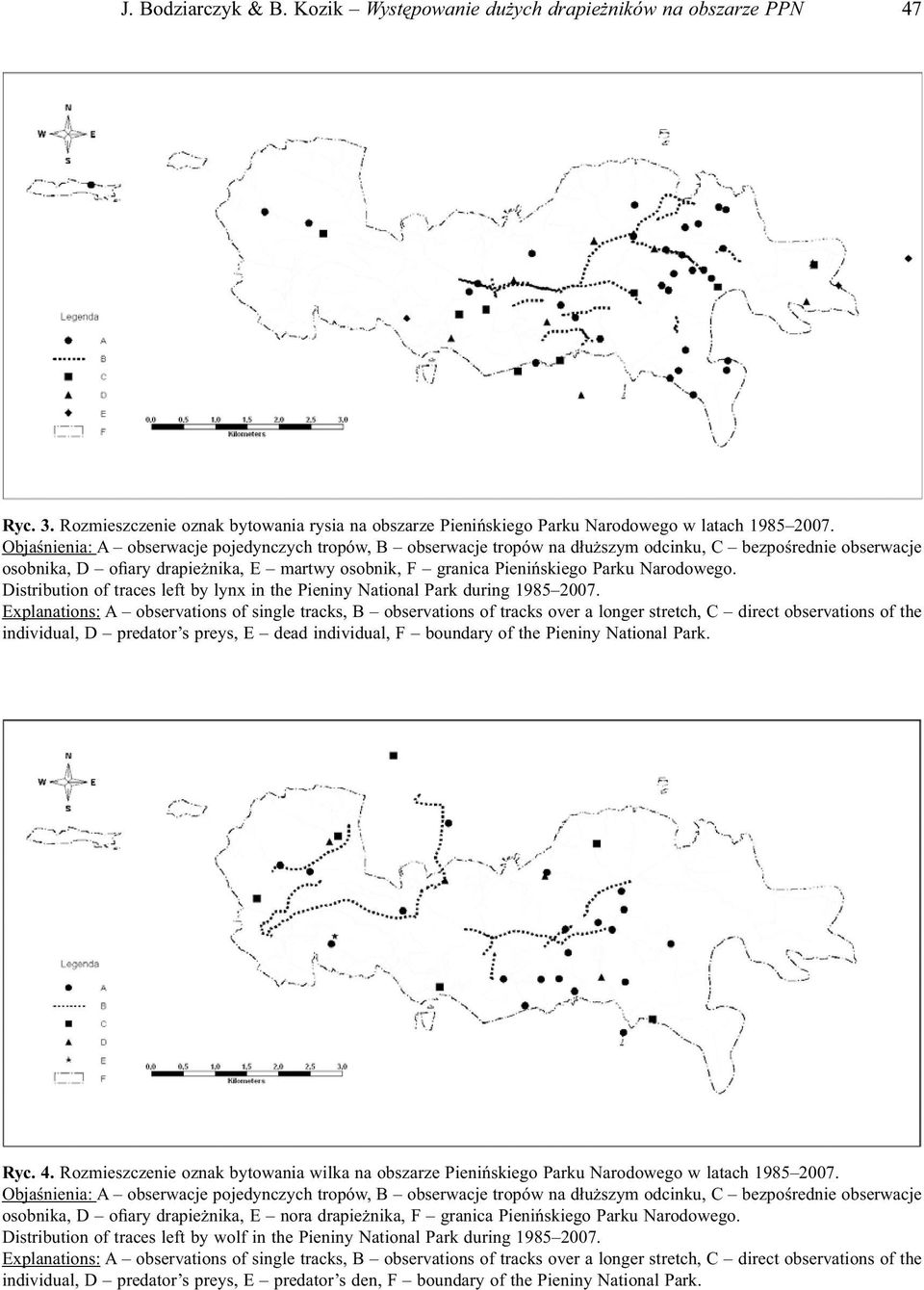 Narodowego. Distribution of traces left by lynx in the Pieniny National Park during 1985 2007.