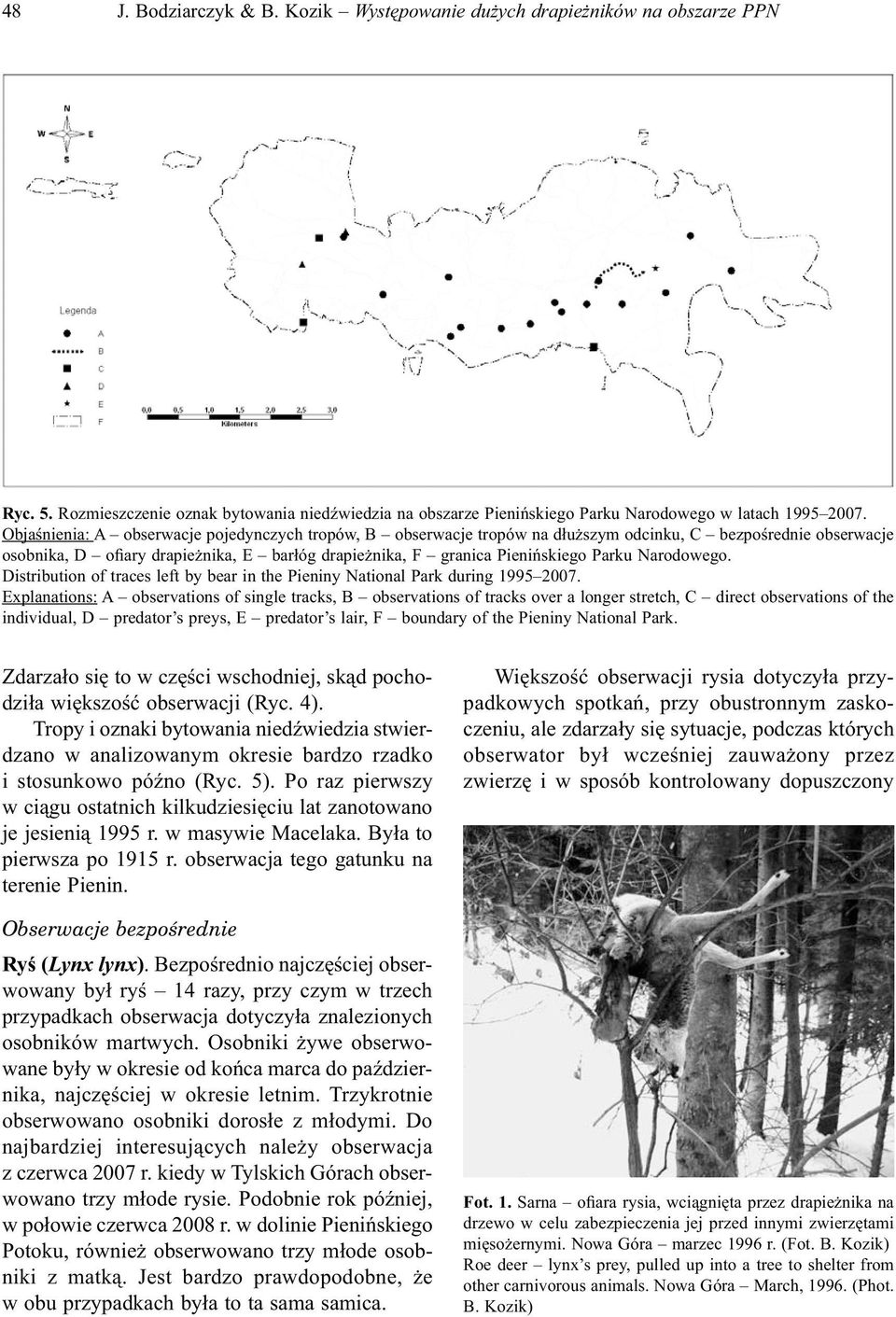Narodowego. Distribution of traces left by bear in the Pieniny National Park during 1995 2007.