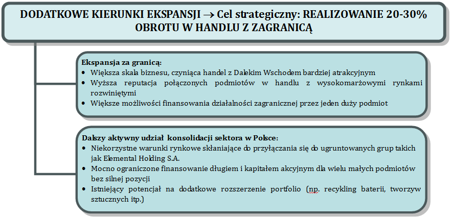 4.12.6 Strategia rozwoju Emitenta