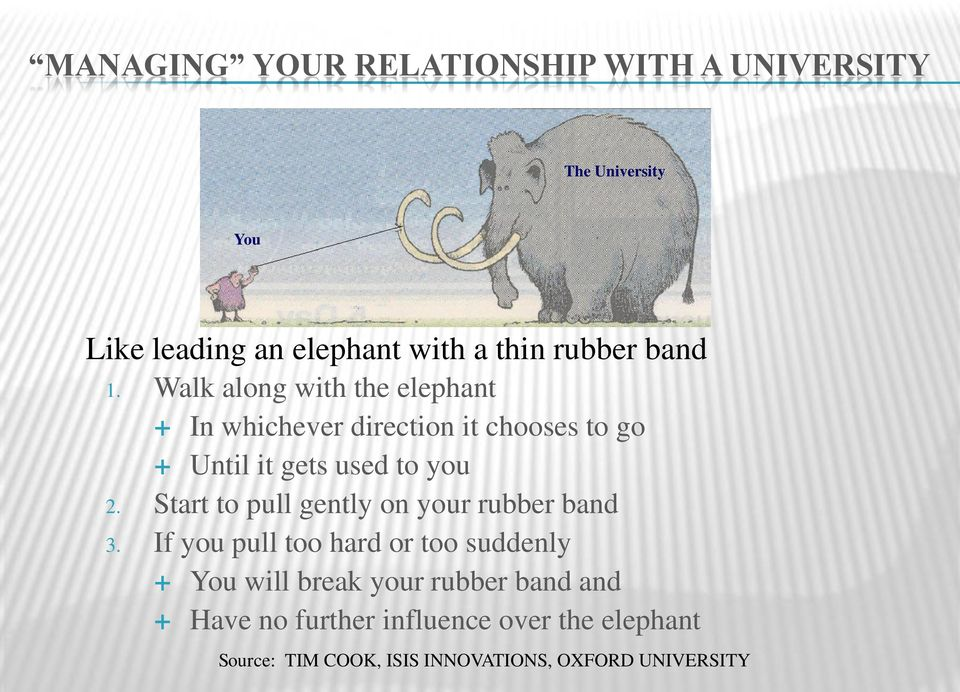 Walk along with the elephant In whichever direction it chooses to go Until it gets used to you 2.