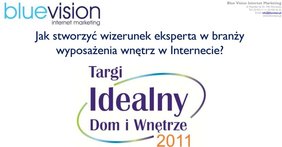 Blue Vision Internet Marketing ul.