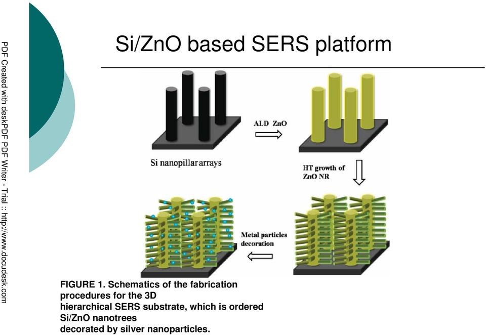 the 3D hierarchical SERS substrate, which is