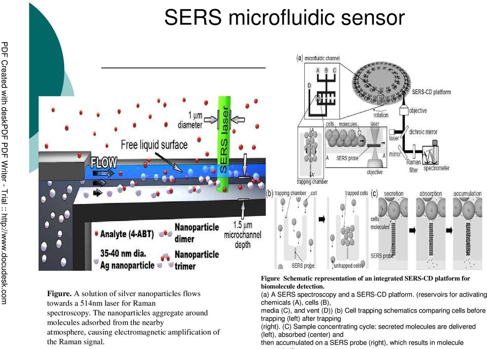 Figure Schematic representation of an integrated SERS-CD platform for biomolecule detection. (a) A SERS spectroscopy and a SERS-CD platform.