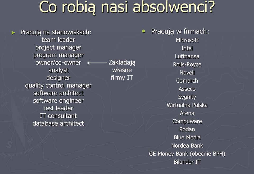 control manager software architect software engineer test leader IT consultant database architect Zakładają
