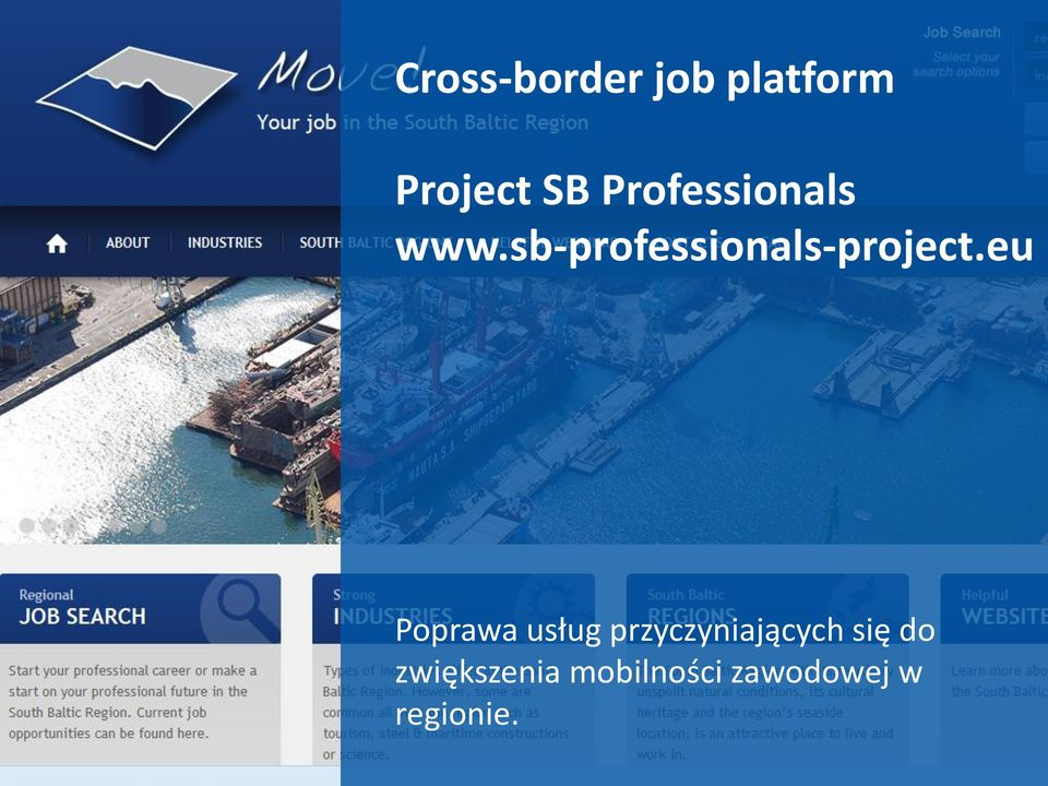 sb-professionals-project.