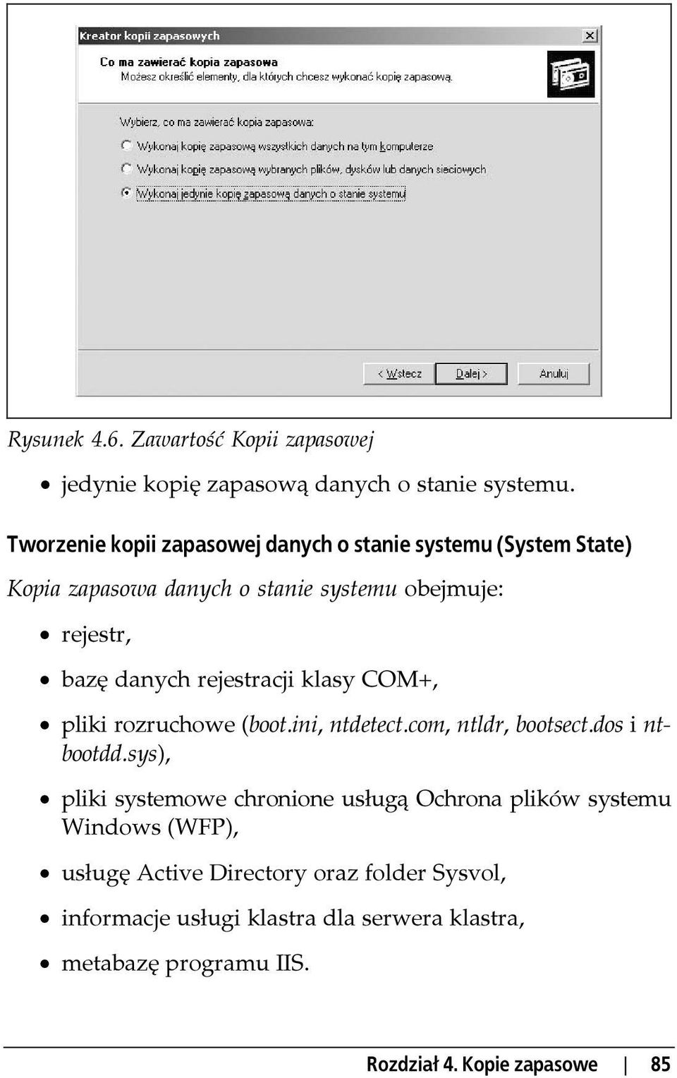rejestracji klasy COM+, pliki rozruchowe (boot.ini, ntdetect.com, ntldr, bootsect.dos i ntbootdd.