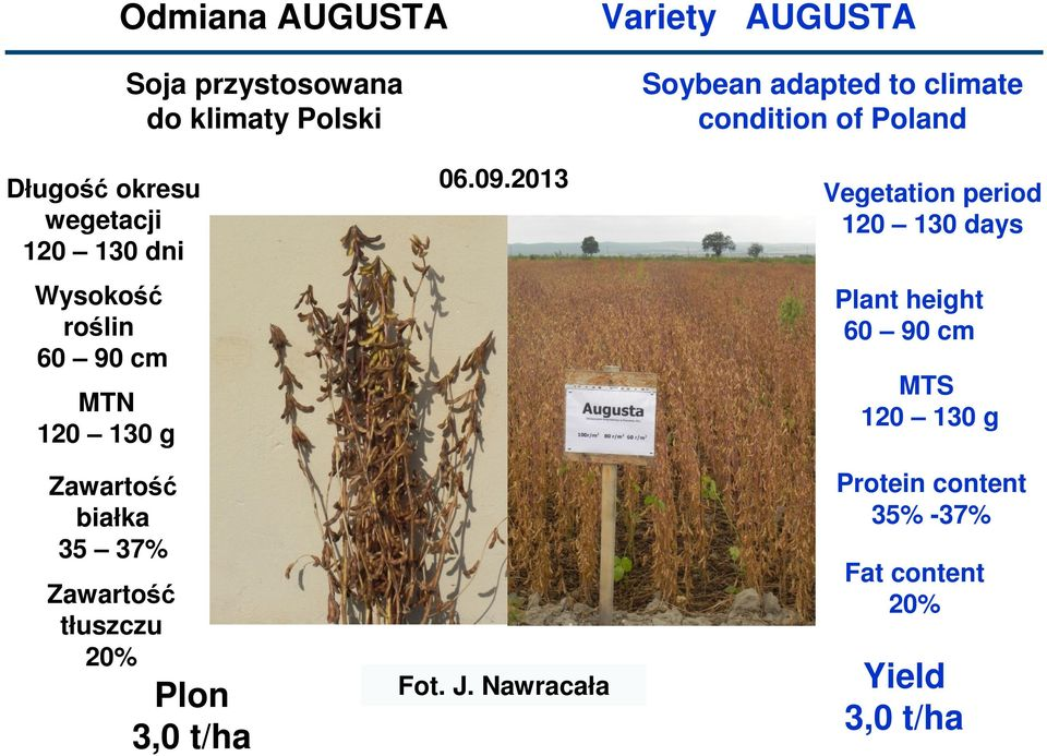 2013 Soybean adapted to climate condition of Poland Vegetation period 120 130 days Plant height 60