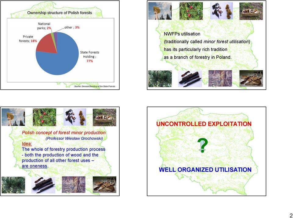 Source: General Directory of the State Forests UNCONTROLLED EXPLOITATION Polish concept of forest minor production