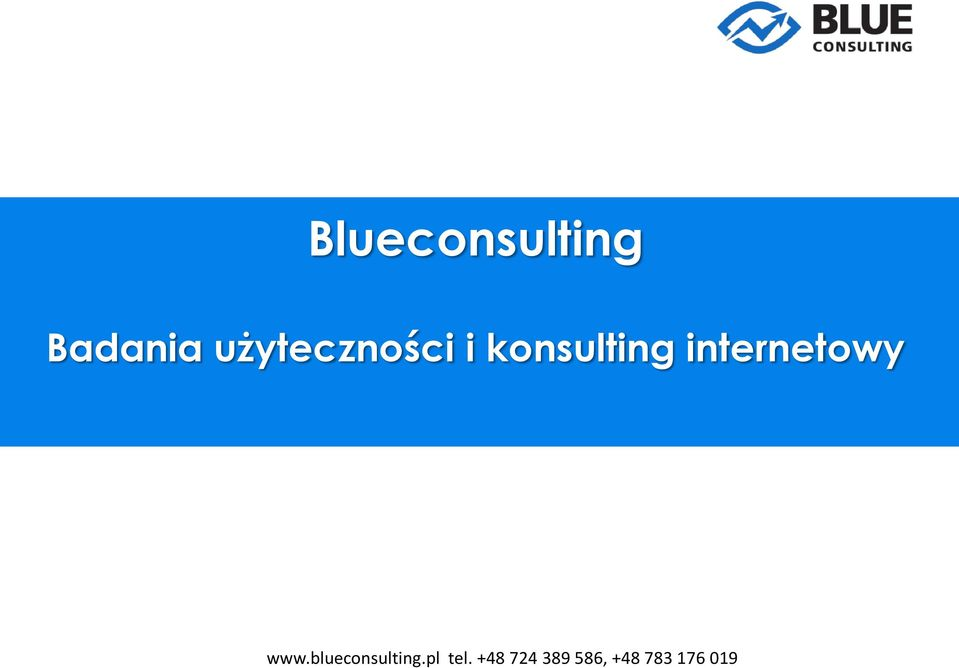 konsulting internetowy
