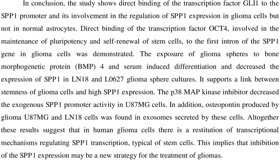 Direct binding of the transcription factor OCT4, involved in the maintenance of pluripotency and self-renewal of stem cells, to the first intron of the SPP1 gene in glioma cells was demonstrated.