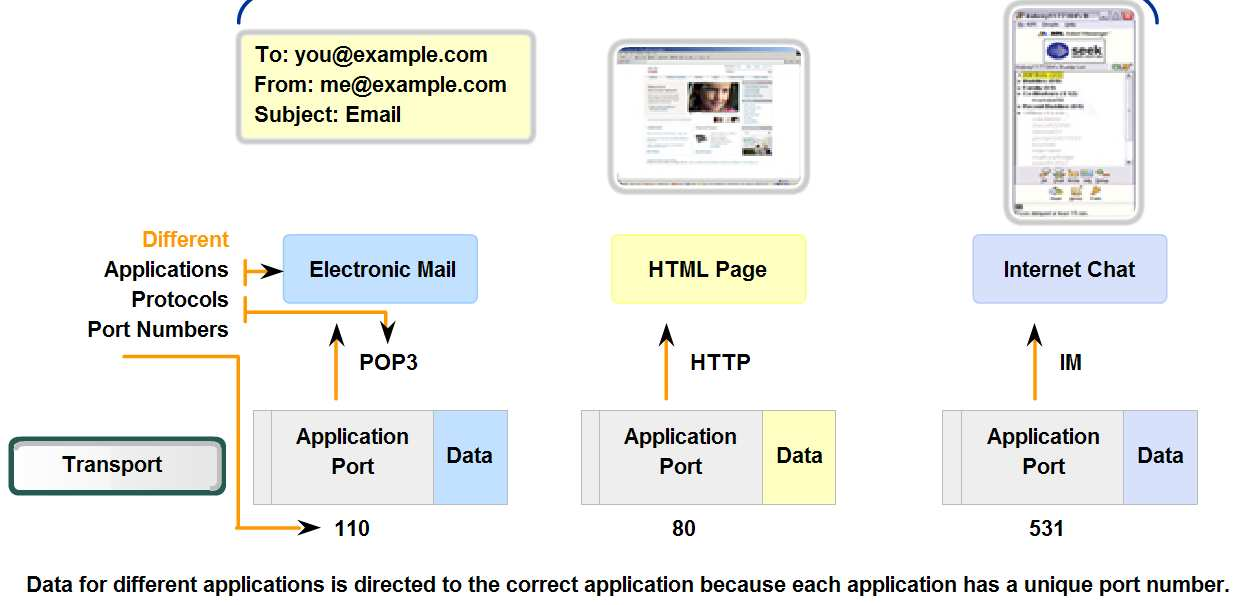 Transport Layer Role and Services Identify how a port number is