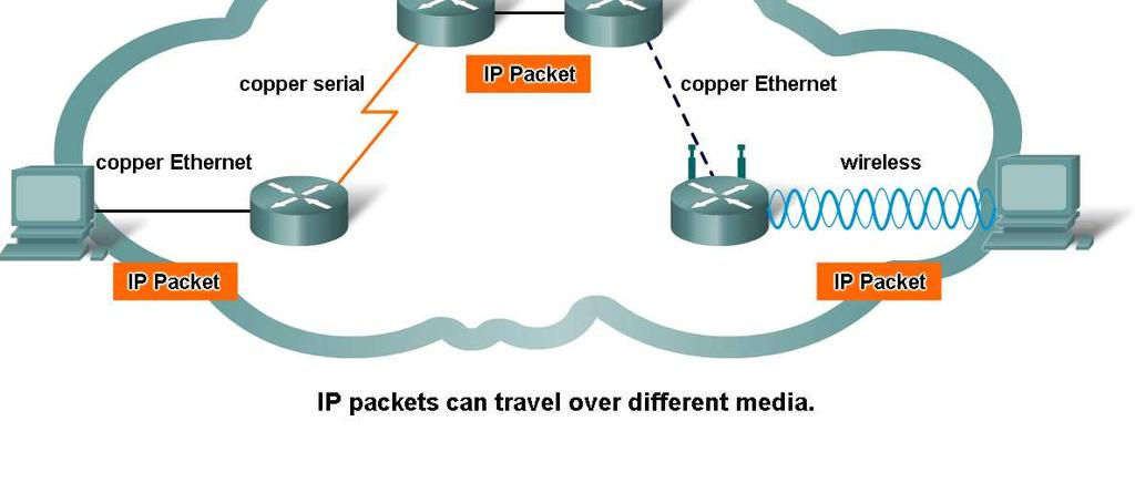Network Layer Protocols and Internet Protocol (IP) Describe the