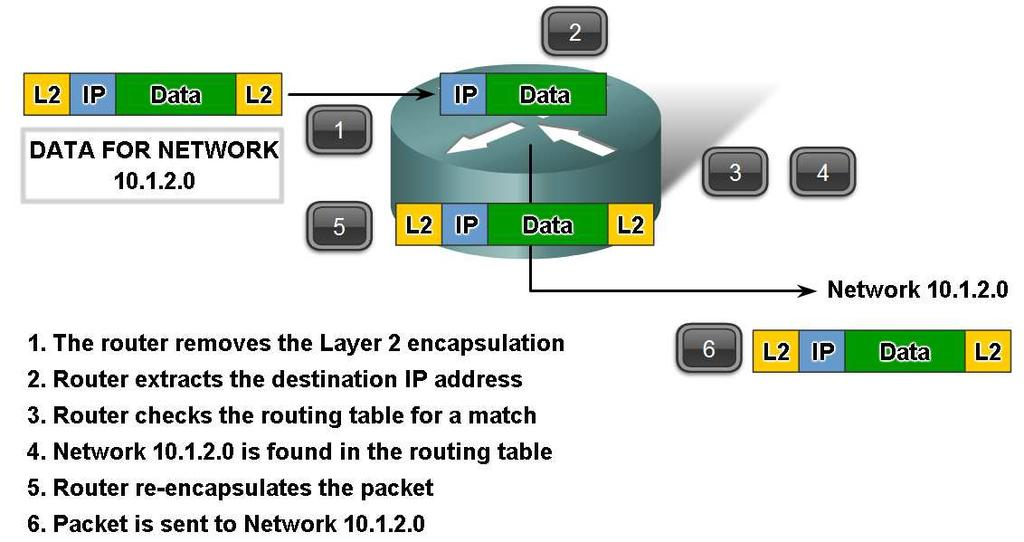 Fundamentals of Routes, Next Hop Addresses and Packet Forwarding Trace the steps of several IP packets as