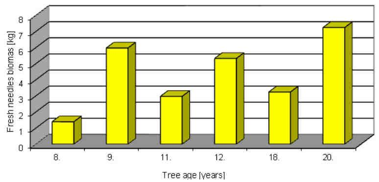 548 Monika Sporek in the density and the age of trees. The study was conducted in young tree stands, between eight and twenty years old.