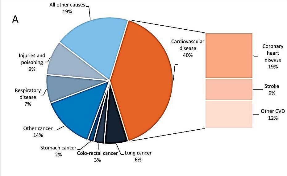 Proportion of all deaths due to major causes in